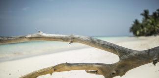 Four Seasons Resort Seychelles Desroches