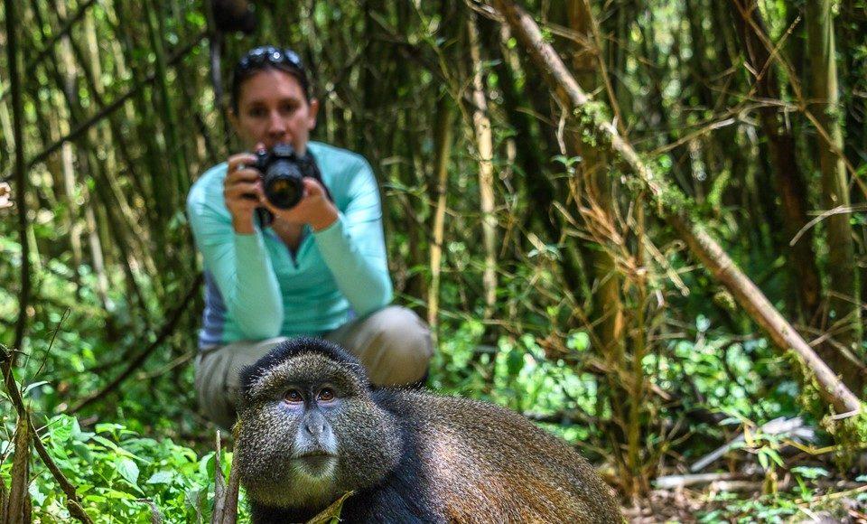 WIlderness Safaris