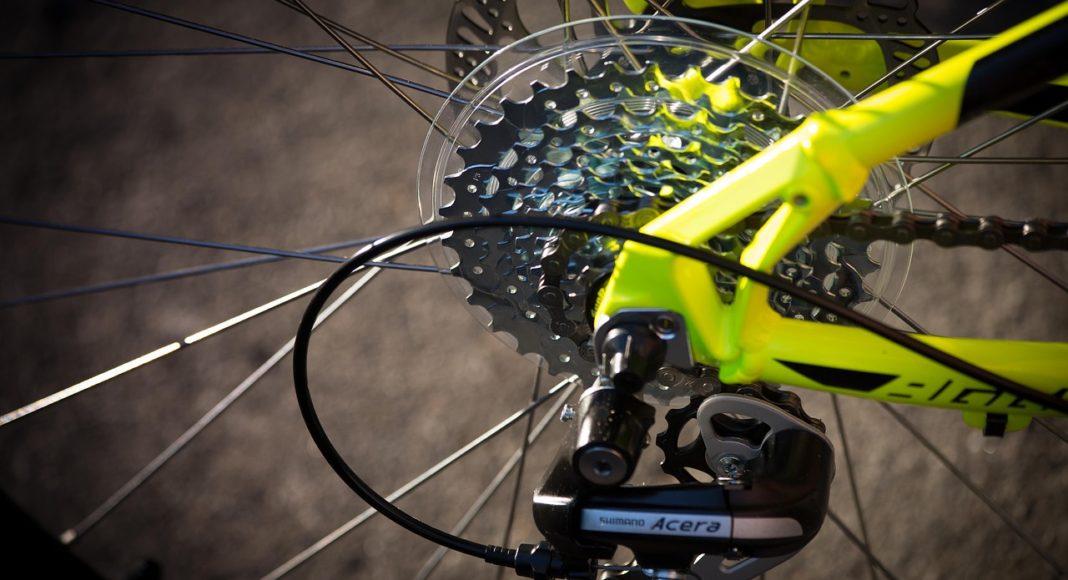 Sylvester Mountain Bike