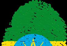 Ethiopian e-Visa