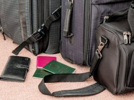 Cost of travel visas