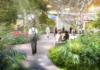 Hamad International Airport Expansion